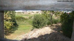 Detalle de Torre en la Zaragozeta Caspe con regadío
