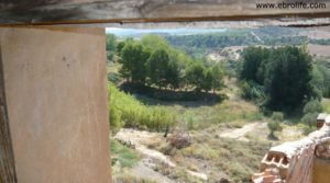 Se vende Torre en la Zaragozeta Caspe con cereales