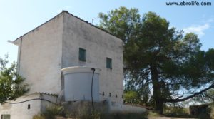 Torre en la huerta de Caspe para vender con almacén por 38.000€