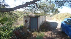 Foto de Torre en la huerta de Caspe con porche por 38.000€