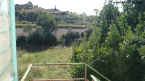 Vendemos Torre en la huerta de Caspe con agua por 38.000€