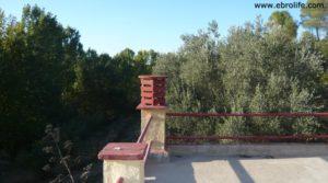 Masico en el rio Matarraña Mazaleón para vender con frutales