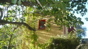 Masico en el rio Matarraña Mazaleón a buen precio con frutales