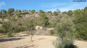 Cabaña en Nonaspe en oferta con bosque
