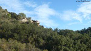 Foto de Cabaña en Nonaspe en venta con monte