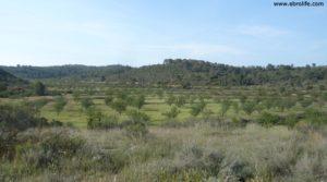 Foto de Gran finca en Fabara con rio algars por 49.000€