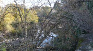 Soto en Caspe para vender con rio guadalope por 22.000€