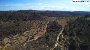 Vendemos Finca en Calaceite con pozo de agua por 86.000€