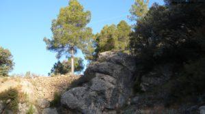 Finca trufera en Rafales en oferta con río por 95.000€