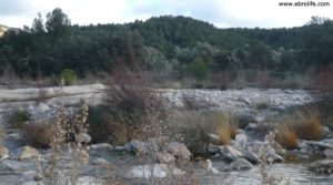 Olivar en el rio Tastavins en Fuenteespalda para vender con bosques por 105.000€