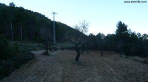 Se vende Masía del horno Fuentespalda con bosques por 160.000€
