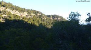Masía del horno Fuentespalda a buen precio con bosques por 160.000€