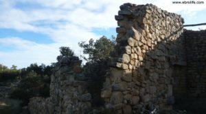 Olivar joven en Cretas a buen precio con olivos por 28.000€
