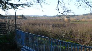 Gran casa de campo en Maella para vender con río