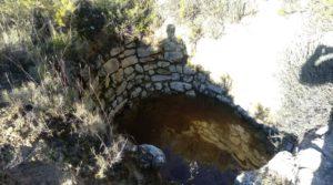 Olivar con casa de piedra en Maella. para vender con privacidad por 23.000€