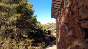 Olivar con casa de piedra en Maella. en venta con tranquilidad por 23.000€