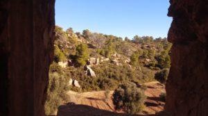 Vendemos Olivar con casa de piedra en Maella. con privacidad