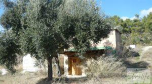 Casa en el río Tastavins, en La Portellada. a buen precio con almendros