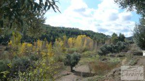 Se vende Casa en el río Tastavins, en La Portellada. con higueras