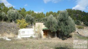 Detalle de Casa en el río Tastavins, en La Portellada. con higueras por 36.000€