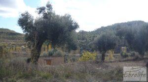 Se vende Casa en el río Tastavins, en La Portellada. con regadío por 36.000€
