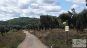 Casa en el río Tastavins, en La Portellada. para vender con regadío por 36.000€
