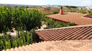 Detalle de Hacienda en Caspe con almacén