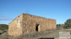 Se vende Olivar centenario en Maella. con excelente acceso. por 16.000€