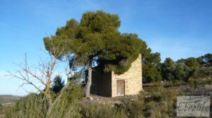 Foto de Masía de piedra en Maella. con olivos centenarios