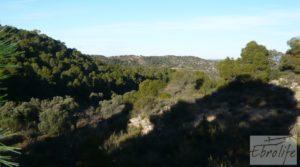 Masía de piedra en Maella. en venta con olivos centenarios por 29.000€
