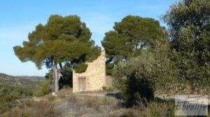 Vendemos Masía de piedra en Maella. con olivos centenarios