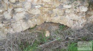 Antiguo Molino aceitero en Arens de Lledo. a buen precio con fosa séptica