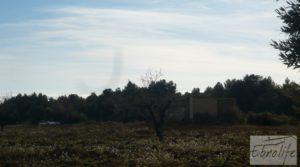 Finca con pozo en La Fresneda a buen precio con almendros y olivos por 48.000€