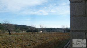 Vendemos Finca con pozo en La Fresneda con almendros y olivos