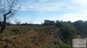 Se vende Finca con pozo en La Fresneda con almendros y olivos por 48.000€
