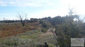 Detalle de Finca con pozo en La Fresneda con almendros y olivos por 48.000€