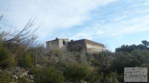 Finca con pozo en La Fresneda para vender con almendros y olivos por 48.000€