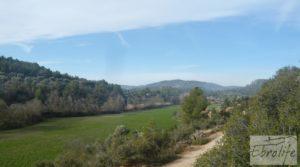 Foto de Finca con pozo en La Fresneda en venta con almendros y olivos por 48.000€