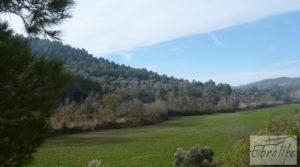 Finca con pozo en La Fresneda en oferta con almendros y olivos
