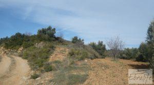 Se vende Finca con pozo en La Fresneda con almendros y olivos