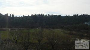 Foto de Finca con pozo en La Fresneda en venta con almendros y olivos