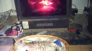 Foto de Masía en la Fresneda con calefacción central