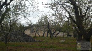 Magnífica masía en Valderrobres, rodeada de almendros. para vender con almendros y olivos en plena producción