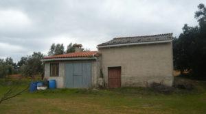 Foto de Finca de avellanos en Cretas en venta con buen acceso por 63.000€