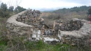 Finca de avellanos en Cretas para vender con pozo de agua
