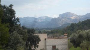 Foto de Finca de avellanos en Cretas en venta con buen acceso