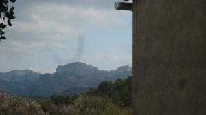 Foto de Finca de avellanos en Cretas con pozo de agua