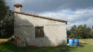 Foto de Finca de avellanos en Cretas con buen acceso por 63.000€