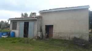 Vendemos Finca de avellanos en Cretas con pozo de agua