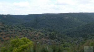 Casa y olivar en Fornoles en venta con buenas vistas